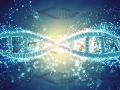 Uso de Células Tronco, Método de Engenharia Tecidual, usos de Tecidos Dentais e Substituto Biológico do Dente